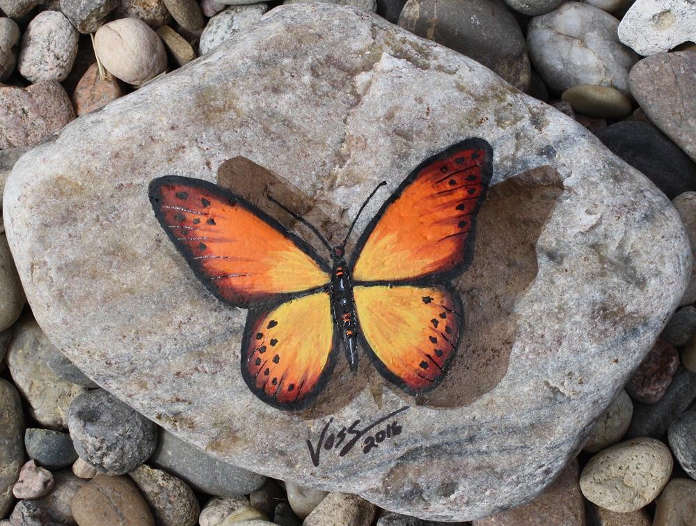 Butterfly Stone 4